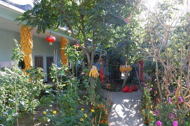 小院菜园设计效果图